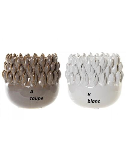 Vase coquillages